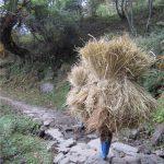 Bhutan_Durchquerung_Reise Ostbhutan (32)