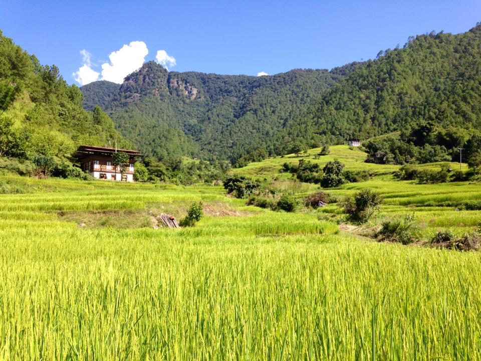 Bhutan Trekking & Reise 2016 mit berghorizonte