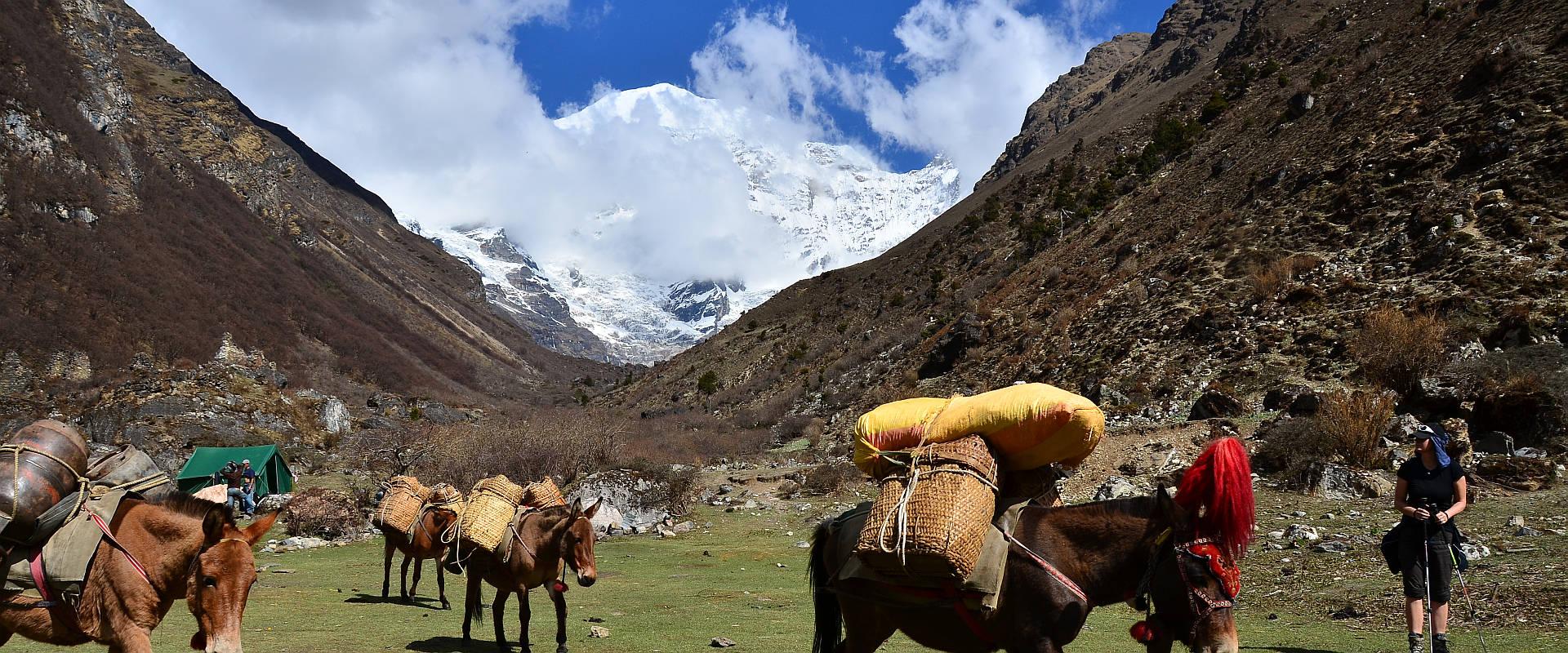 Bhutanreisen & Trekking 2016 mit dem Reiseveranstalter berghorizonte