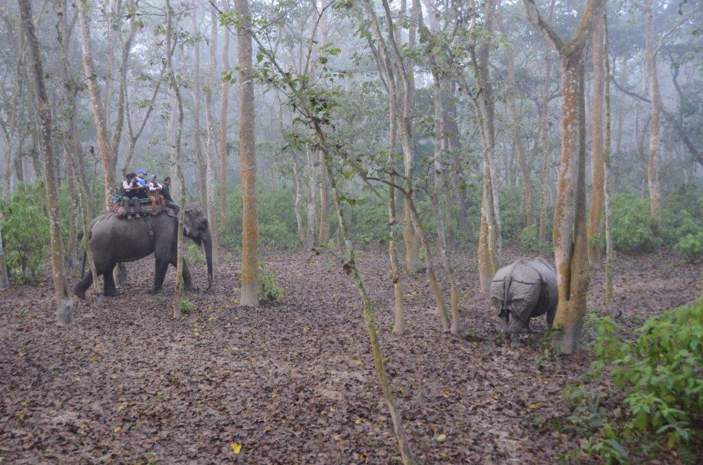 Nepal_Mustang_Annapurna_Chitwan_ Lodge Trekking (34)