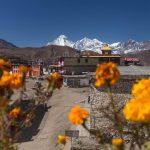 201610_Nepal-211 (800×533)