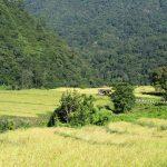 Bhutan_Durchquerung_Reise Ostbhutan (31)